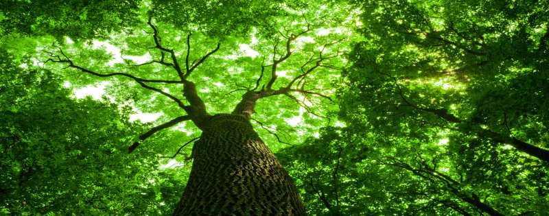 How To Enhance Your Spiritual Growth
